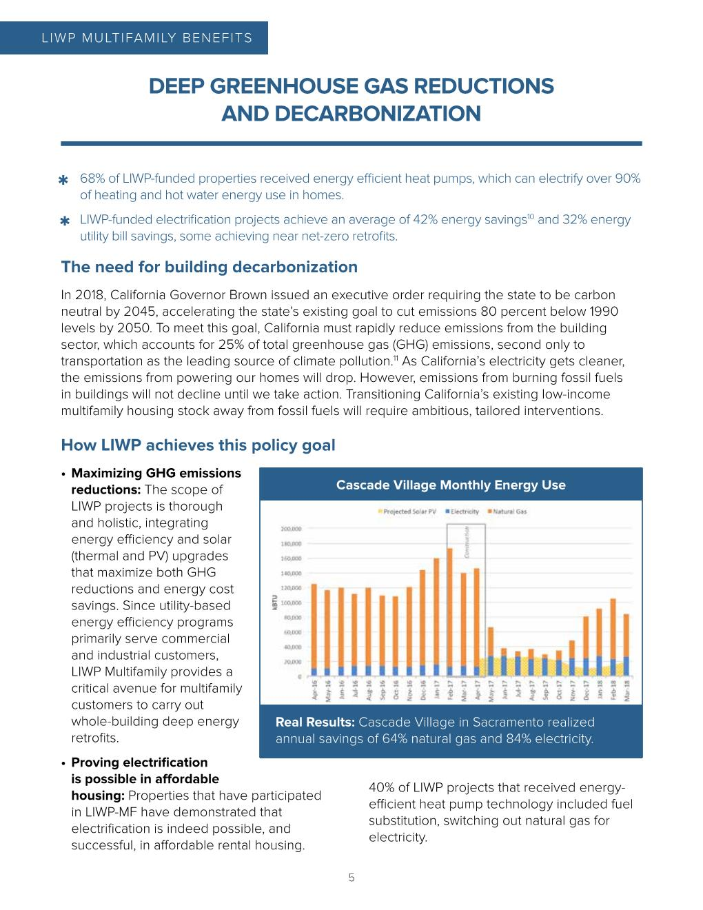 LIWP_PolicyBrief_PRINT_Jan2020